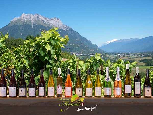 NOUVEAU : nos vins vendus par FLORISIM